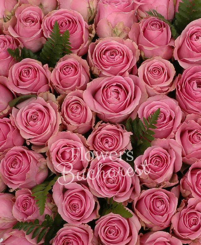 59 trandafiri roz, ferigă, suport inima