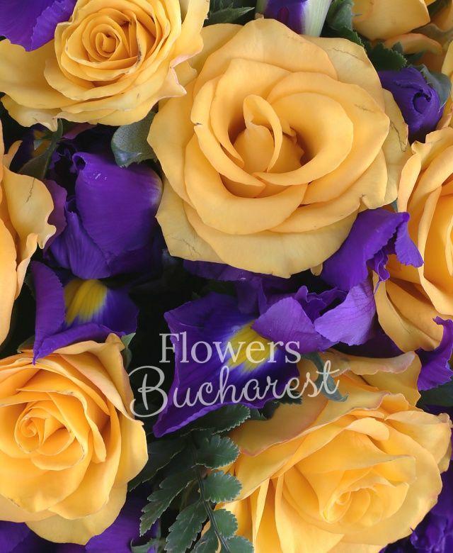 19 trandafiri galbeni, 20 iris mov