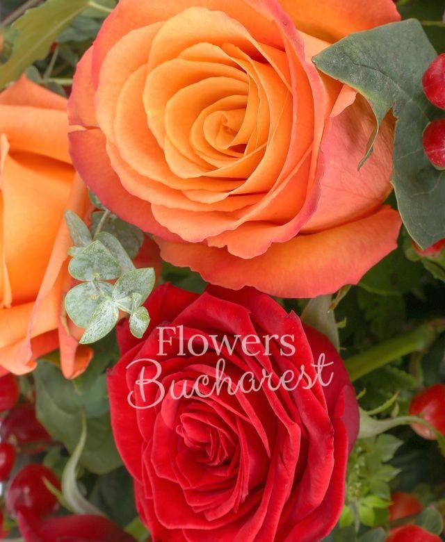 5 trandafiri rosii, 6 trandafiri portocalii, 4 hypericum roșu, eucalypt, iedera, bupleurum, curly, cuib