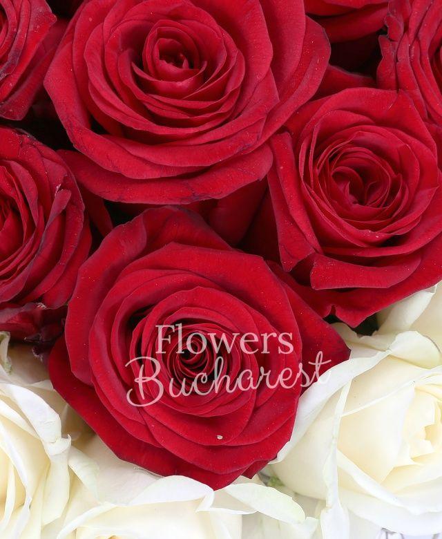 17 trandafiri rosii, 16 trandafiri albi, tillandsia, coș