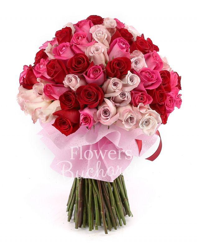 33 trandafiri roz, 33 trandafiri rosii, 33 trandafiri ciclam