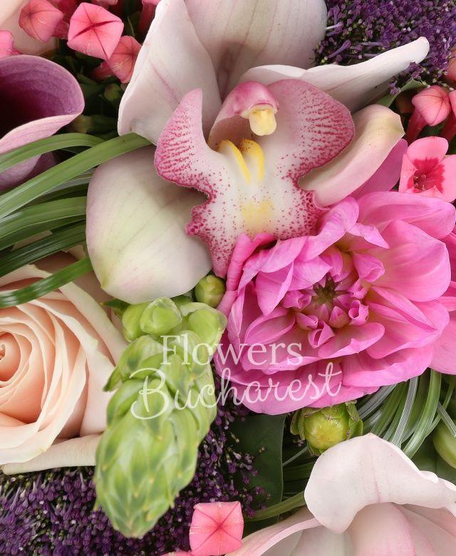 7 ornithogalum, 5 trandafiri crem, 5 bouvardia roz, 5 trachelium mov, 5 cale roz, 5 dalii roz, cymbidium alb, beargrass