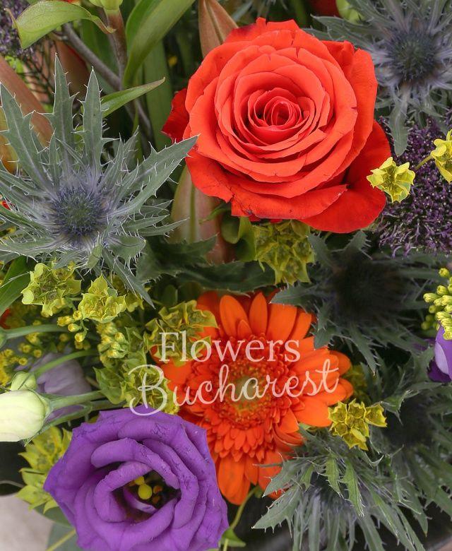 2 crini roz, 5 trandafiri portocalii, 5 gerbera portocalie, 5 lisianthus mov, 5 solidago galben, 3 eryngium, 5 trachelium, 3 santini verde, bupleurum, eucalypt, black tide