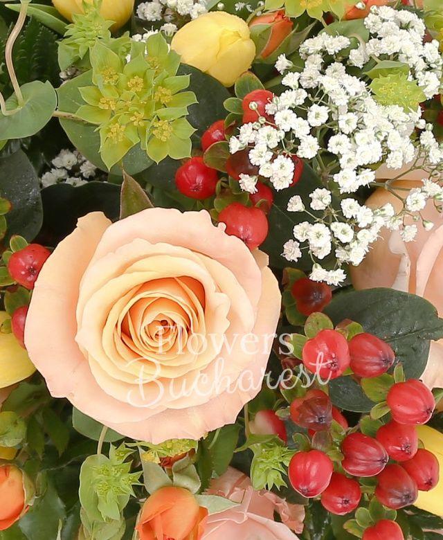 6 trandafiri crem, 5 miniroze portocalii, 3 hypericum roșu, 7 lalele galbene, bupleurum, gypsophila, aspidistra, salal