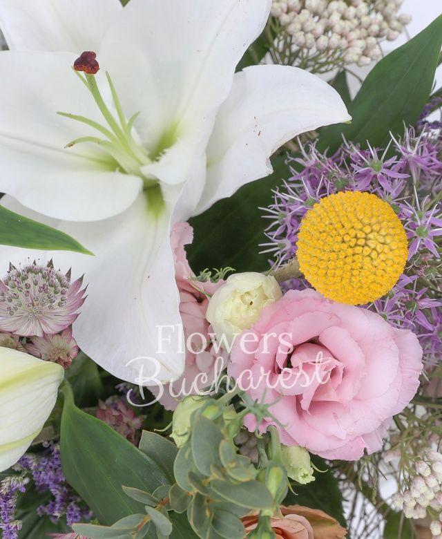 1 crin alb, 3 trandafiri cappuccino, 2 allium, 5 lisianthus roz, 3 craspedia, 3 floare de orez, 3 garoafe cappuccino, astranția grena, limonium, eucalypt, asparagus, cuib