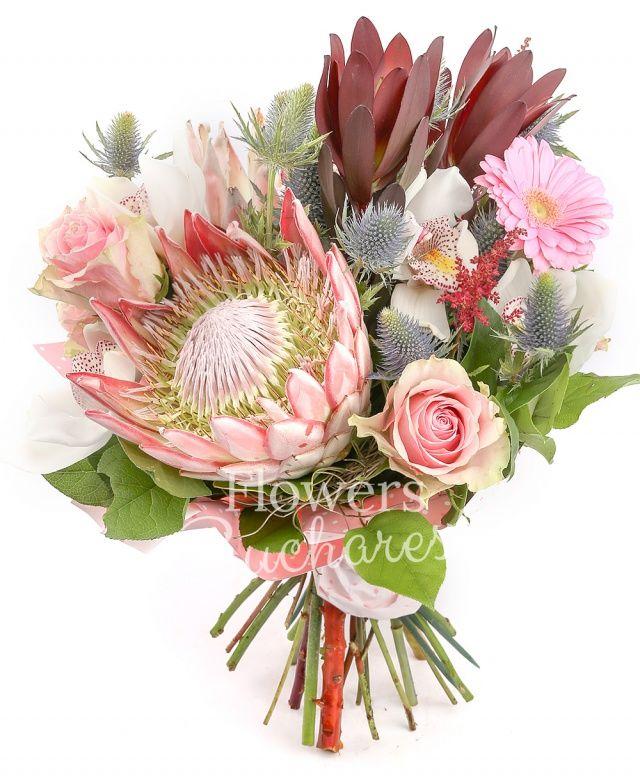 2 proteea, 2 leucadendron, 3 trandafiri roz, 2 gerbera roz, cymbidium alb, 2 eryngium, 2 astilbe grena, salal, cuib
