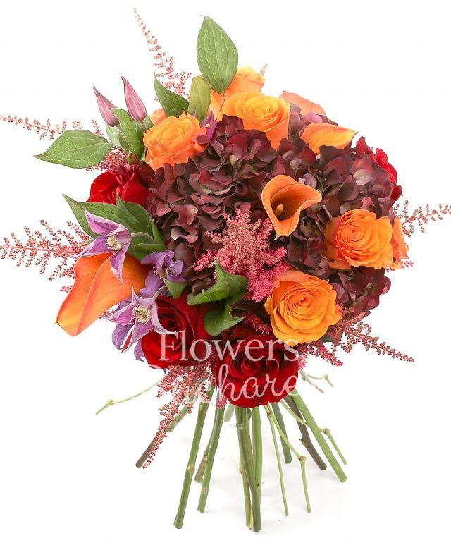 7 trandafiri portocalii, 5 trandafiri rosii, 3 hortensii grena, 5 cale mango, 7 astilbe roz, 2 clematis