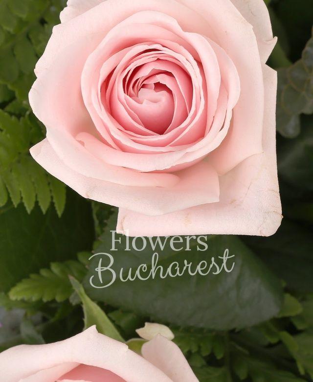 11 trandafiri roz, eucalypt, salal