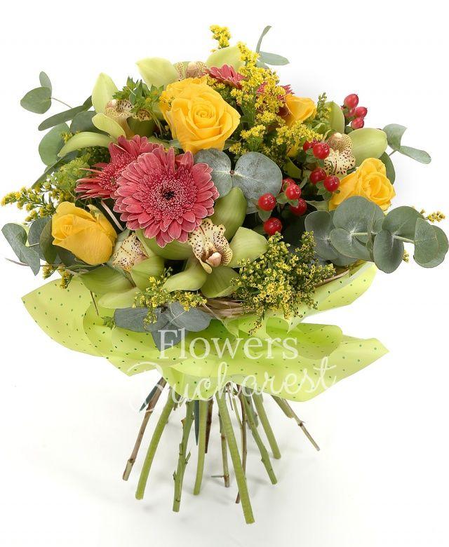 5 trandafiri galbeni, 4 gerbera, 3 hypericum, 3 solidago, cymbidium verde, eucalypt, salal, cuib