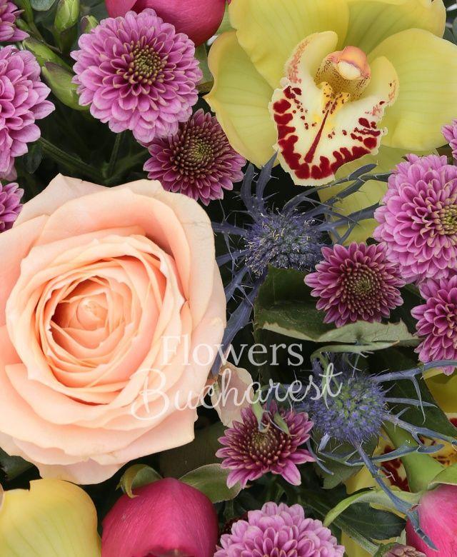 3 trandafiri peach, 5 trandafiri cyclam, 3 santini roz, 3 eryngium albastru, cymbidium galben, eucalypt, salal, vas ceramic
