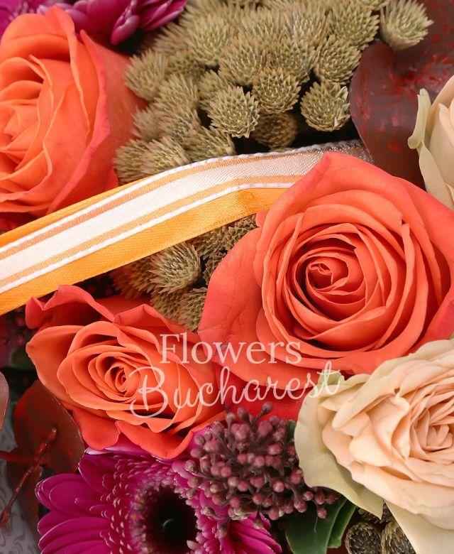 5 trandafiri portocalii, 3 gerbera cyclam, 2 miniroze crem, brunia, schimia, 1 garoafa, eucalypt, tillandsia, carte