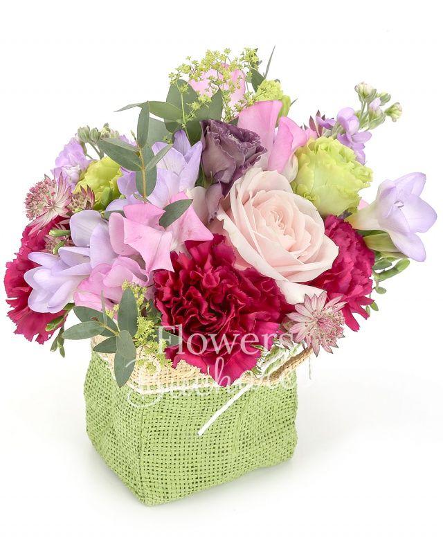 2 matthiola, 5 frezii mov, astranția, 2 trandafiri roz, 2 lisianthus verde, 3 garoafe cyclam, eucalypt, săculeț