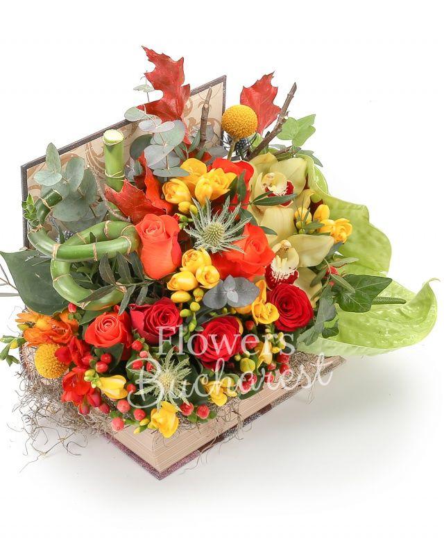 2 anthurium verzi, 3 trandafiri portocalii, 2 trandafiri rosii, 7 frezii galbene, 1 bambus, 1 eryngium, 2 hypericum roșu, 2 craspedia, cymbidium galben, eucalypt, tillandsia, carte