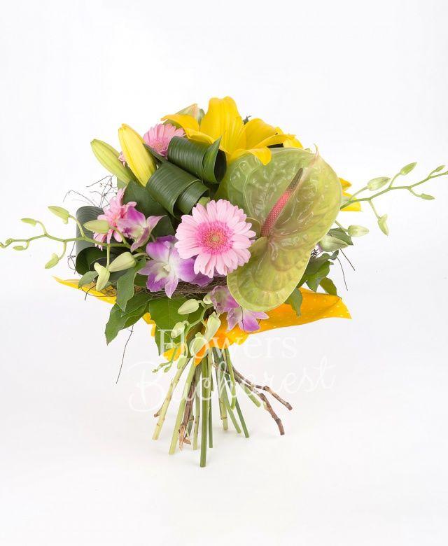 2 crin galbeni, 2 anthurium verzi, 3 gerbera roz, 5 orhidee dendrobium roz, 2 eryngium, aspidistra, salal, cuib