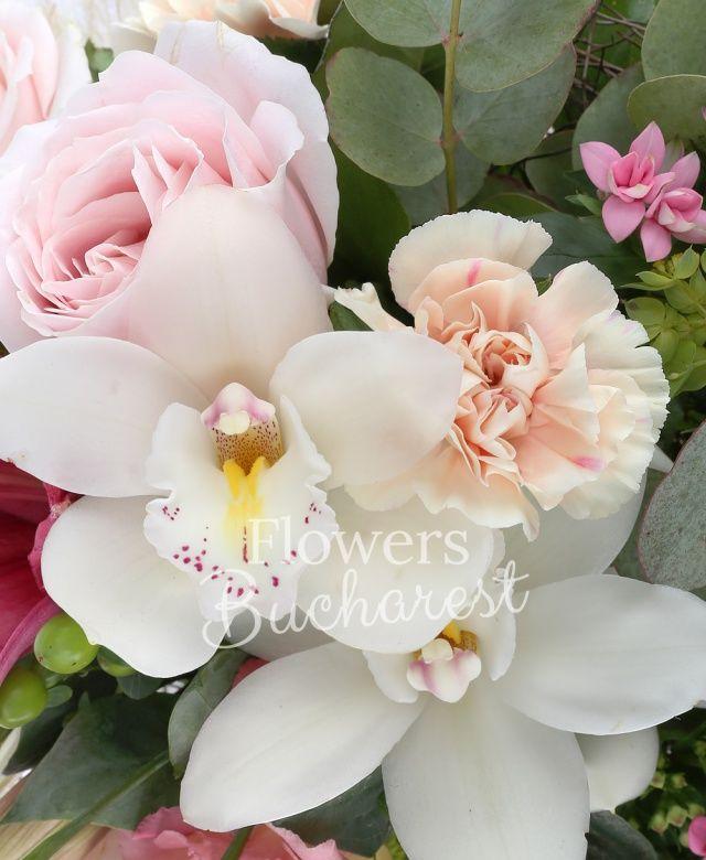 1 crin roz, 5 garoafe crem, 5 hypericum verde, 3 bouvardia roz, 3 trandafiri roz, 3 lisianthus roz, cymbidium, bupleurum, eucalypt, salal, cuib