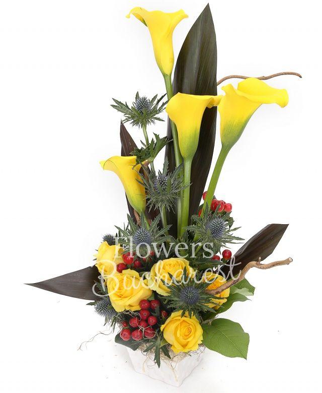 4 cale galbene, 5 trandafiri galbeni, 3 hypericum roșu, 2 eryngium, 3 black tide, 1 corylus, vas ceramic