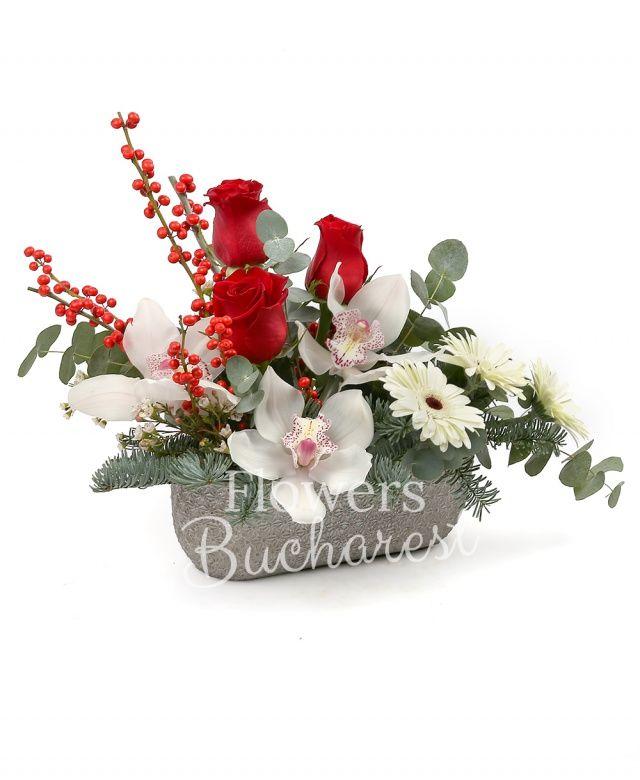 3 trandafiri rosii, cymbidium alb, 3 gerbera alba, ilex, waxflower, brad, eucalypt, vas ceramic