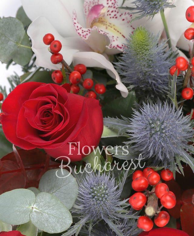 3 trandafiri rosii, 1 cymbidium alb, eryngium, 2 anthurium rosii, ilex, eucalypt, brad, vas ceramic