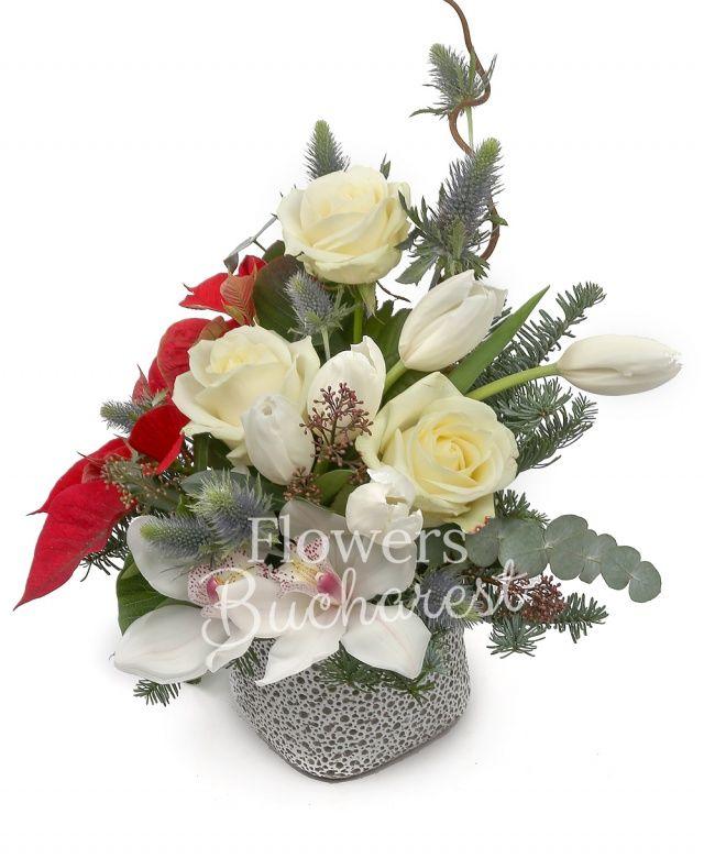3 trandafiri albi, 5 lalele albe, 1 cymbidium alb, poinsettia, eryngium, corylus, brad, eucalypt, vas ceramic