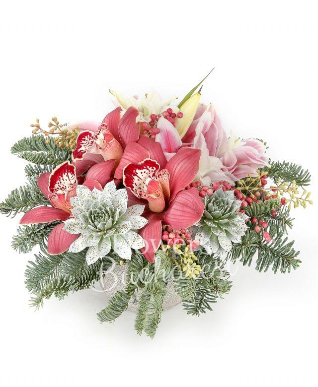 cymbidium, 2 crini roz, 2 suculente, eucalypt berry, piper, brad, vas