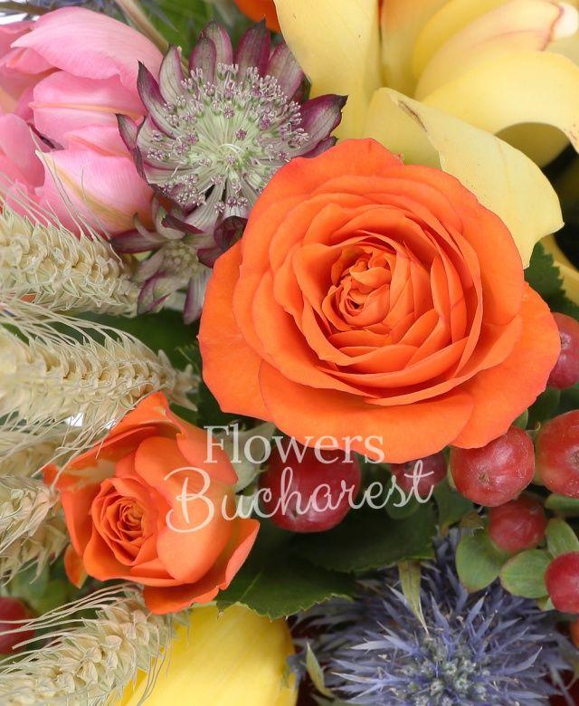 5 lalele galbene, 3 trandafiri rosii, 2 miniroze portocalii, eryngium, cymbidium galben, săculeț