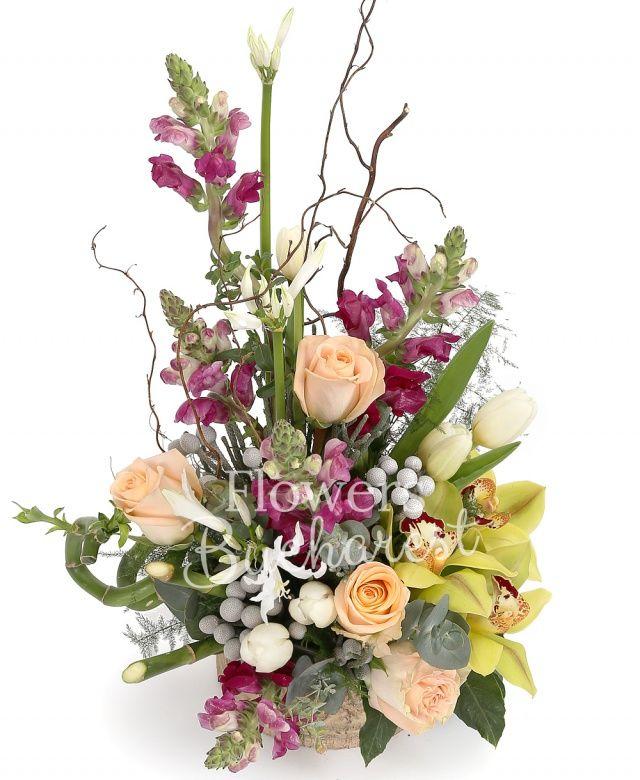 5 antirrhinum, 3 nerine albe, 5 trandafiri crem, 10 lalele albe, cymbidium verde, brunia, bambus, corylus, eucalypt, vas ceramic