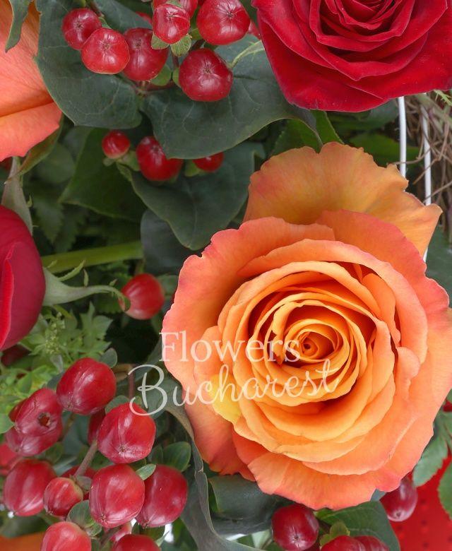 5 trandafiri rosii, 6 trandafiri portocalii, 3 hypericum, bupleurum, eucalypt, iedera, cuib
