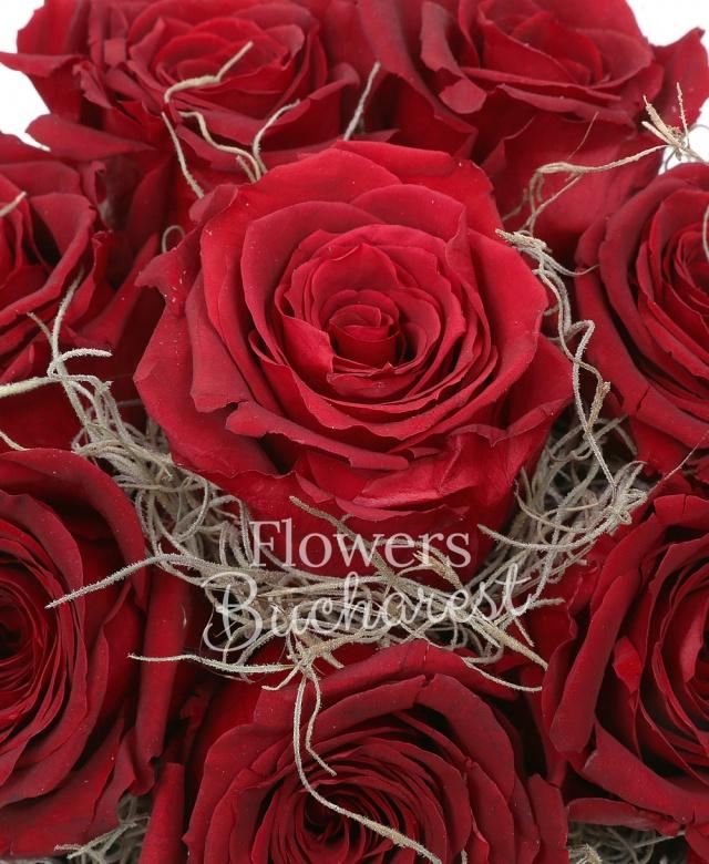 9 trandafir_criogenat_rosu, cutie rotunda