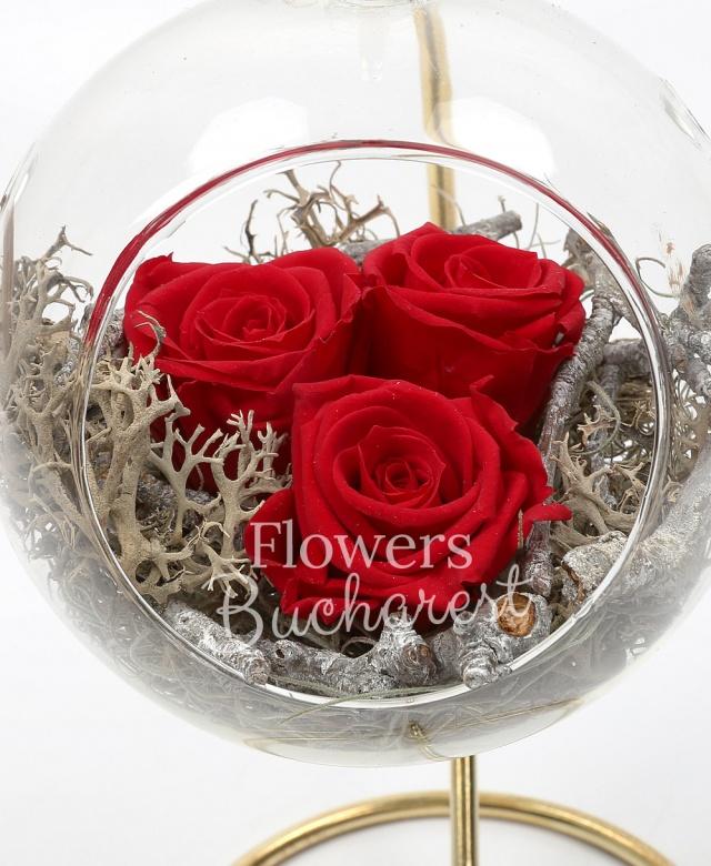 3 trandafir_criogenat_rosu, glob de sticla