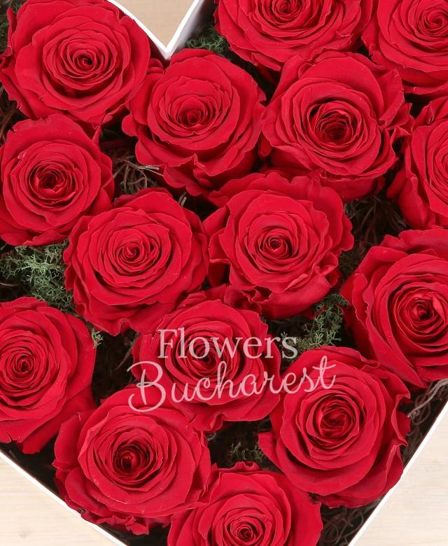 17 trandafir_criogenat_rosu, cutie_inima