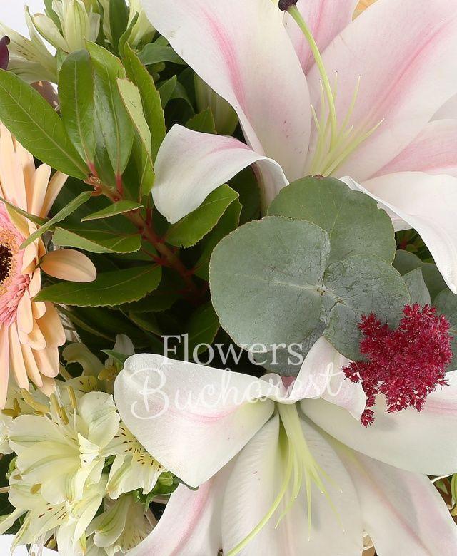 1 crin roz, 3 trandafiri banan, 2 gerbera crem, 2 alstroemeria alba, 3 cale mov, 2 astilbe grena, eucalypt, salal, cuib