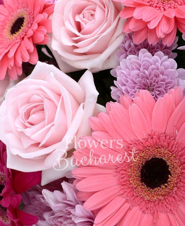 9 trandafiri roz, 5 gerbera roz, 5 gerbera cyclam, 5 crizanteme roz, eucalypt, ruscus