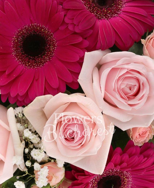 5 trandafiri roz, 5 gerbera cyclam, 3 miniroze roz, 3 bouvardia roz, 3 lisianthus roz, gypsophila, eucalypt, salal