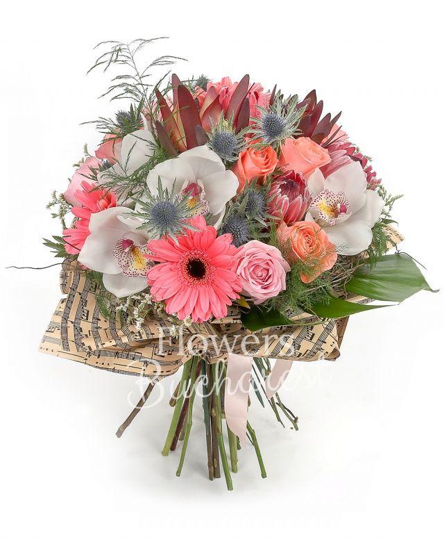 5 trandafiri roz, 5 trandafiri banan, 3 trandafiri roz, 3 gerbera roz, 3 proteea, 3 leucadendron, 3 eryngium, cymbidium alb, asparagus, monstera, cuib