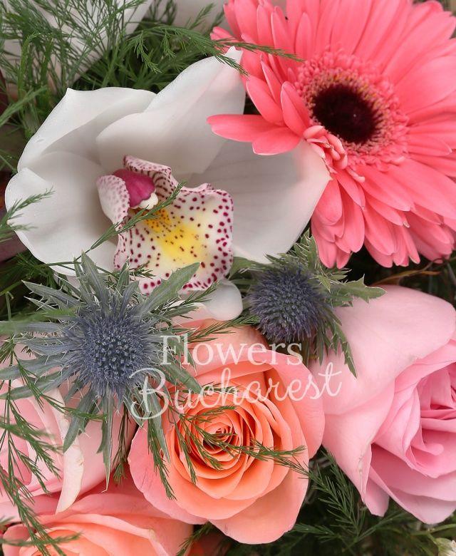 4 trandafiri roz, 4 trandafiri banan, 2 trandafiri roz, 2 gerbera roz, 2 proteea, 2 leucadendron, 2 eryngium, cymbidium alb, asparagus, monstera, cuib