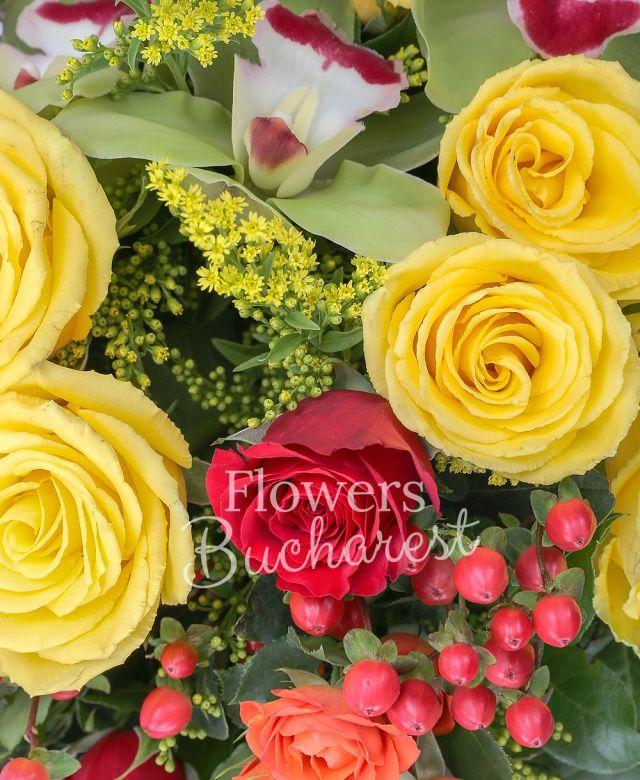 7 trandafiri galbeni, 7 trandafiri rosii, 3 miniroze portocalii, 5 hypericum roșu, 5 solidago, cymbidium verde, salal, cuib