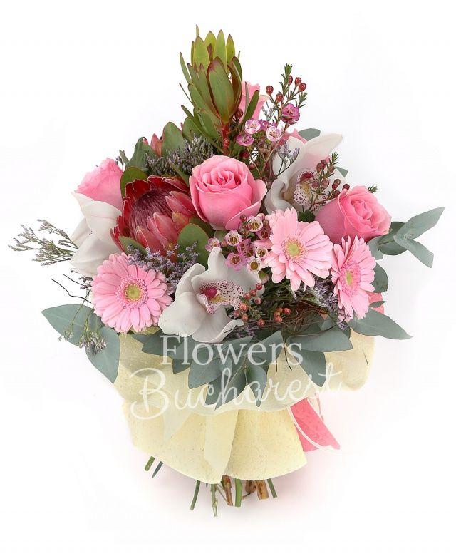 5 trandafiri roz, 2 proteea, 2 leucadendron, 5 gerbera roz, cymbidium alb, waxflower roz, eucalypt, cuib