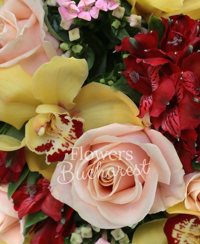 7 trandafiri crem, 6 alstroemeria rosii, 5 alstroemeria portocalii, 5 bouvardia roz, cymbidium galben, salal