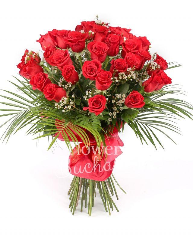 43 trandafiri rosii, waxflower, robelini