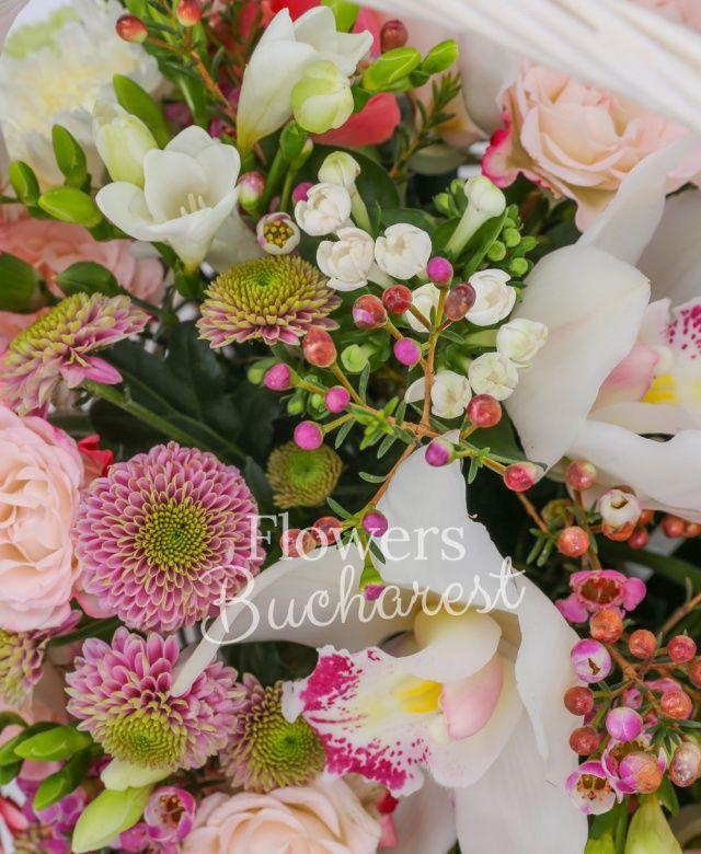3 trandafiri portocalii, 7 garoafe verzi, 5 garoafe cyclam, 3 gerbera roz, cymbidium alb, 3 miniroze crem, 3 bouvardia alba, 10 frezii albe, 5 santini roz, waxflower roz, coș