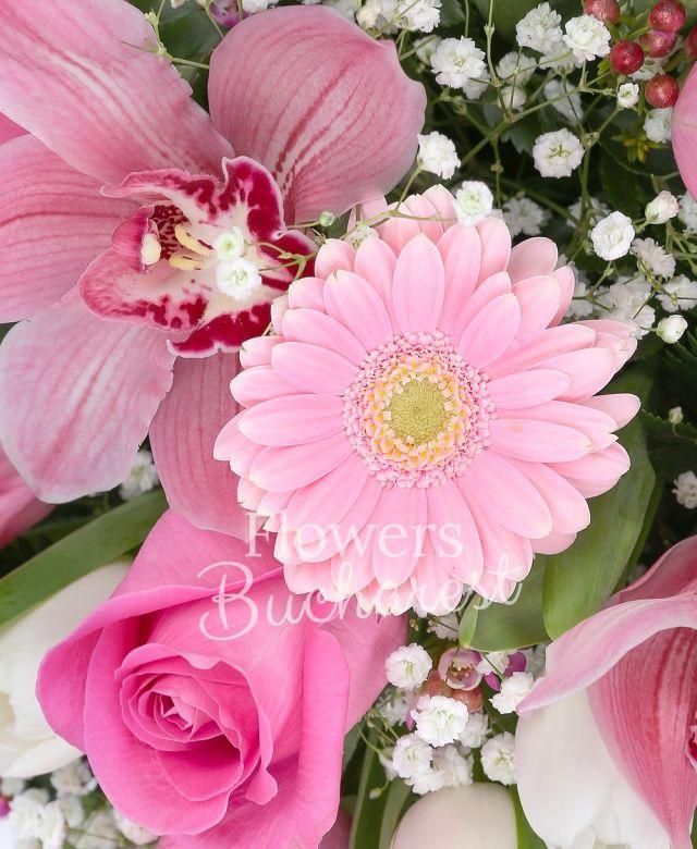 5 trandafiri roz, 15 lalele albe, 7 gerbera roz, cymbidium roz, waxflower roz, gypsophila