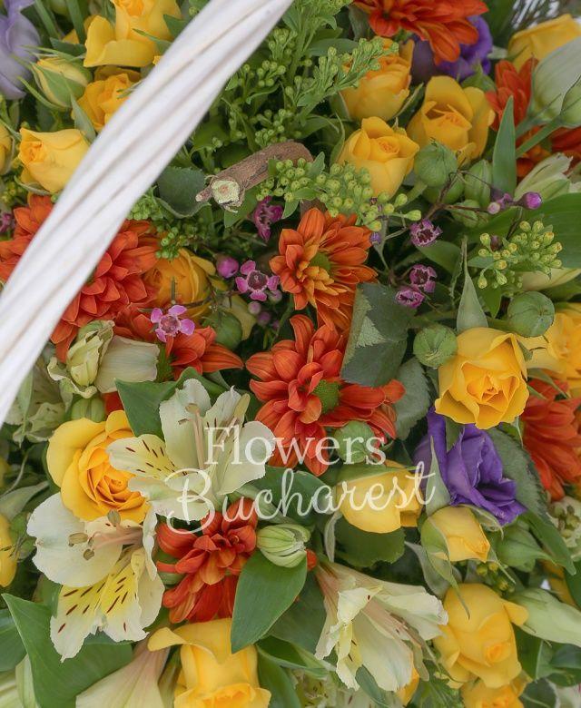 7 miniroze galbene, 5 alstroemeria alba, 4 crizanteme portocalii, 5 lisianthus mov, 4 solidago, waxflower roz, coryllus, coș