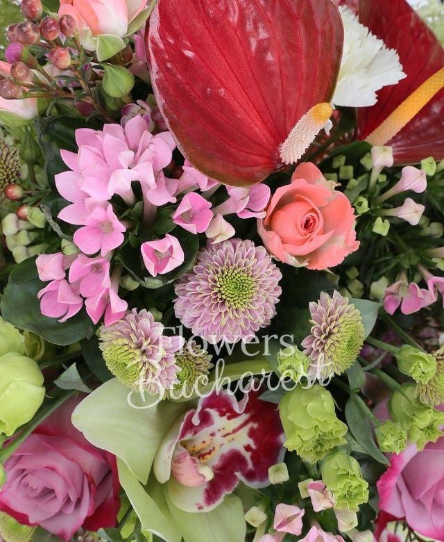7 trandafiri roz, 5 lisianthus verde, 3 miniroze roz, 3 anthurium roșu, 5 garoafe albe, 5 santini roz, 3 bouvardia roz, cymbidium verde, waxflower roz, cuib
