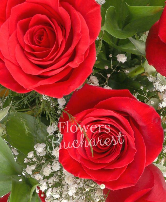 11 trandafiri rosii, gypsophila, ruscus, cuib