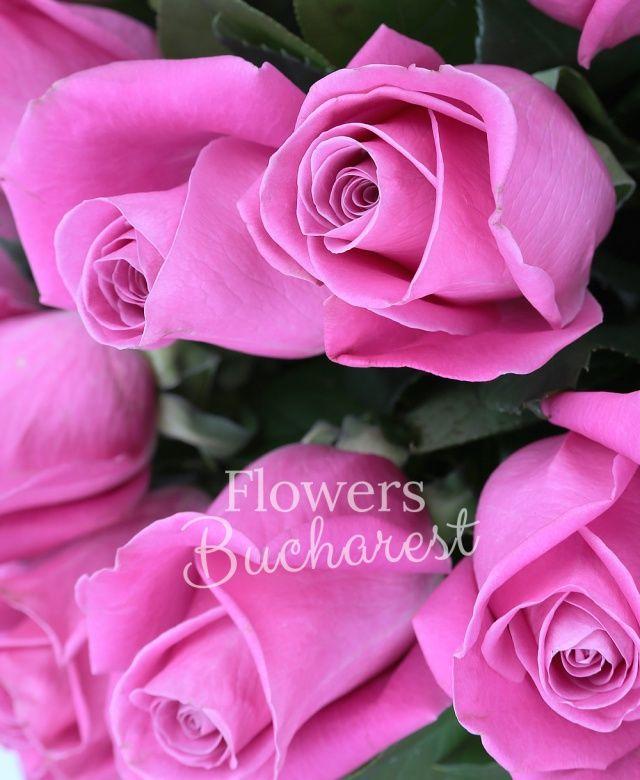 19 trandafiri roz, salal
