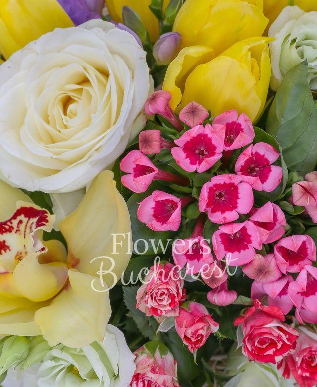 3 trandafiri albi, 3 bouvardia, 5 lisianthus alb, 3 alstroemeria, 5 frezii mov, 3 miniroze roz, 5 lalele galbene, salal, cuib